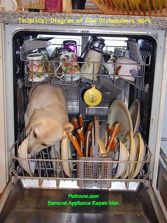 An Inside Look at How Dishwashers Work