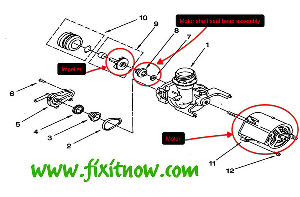 Whirlpool DU810DWGQ1 Dishwasher Pump and Motor Diagram